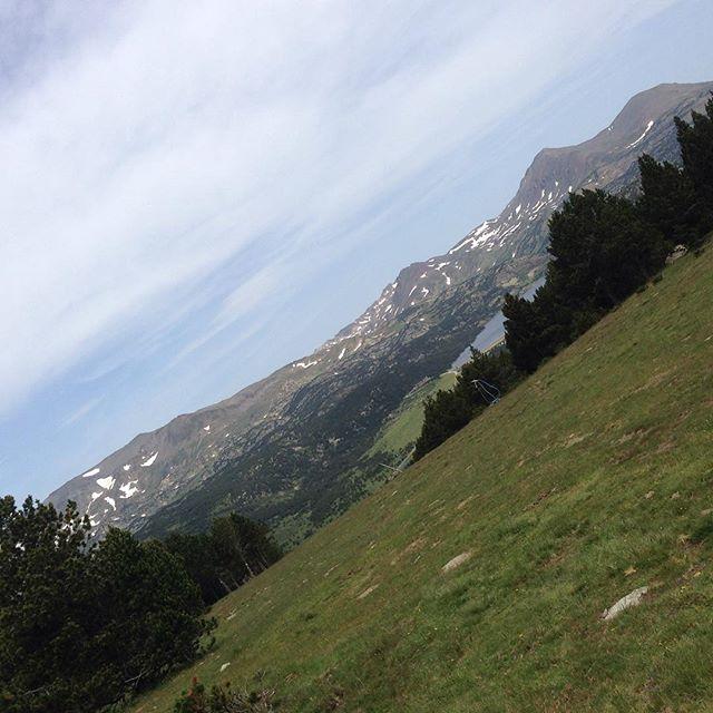 Bergen! Älskar!