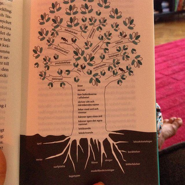 Skriv- och läsutvecklingsträdet. Det kan se lite olika ut, beroende på vilken kultur man växer upp i. Rötterna är grunden. Där språket grundas. Stammen är barnets första steg i eget skrivande och läsande. Och kronan är utvecklingen då barnet kan läsa och skriva på egen hand. Och kronan skjuter alltid ut nya skott. Underbart. Fin bild.