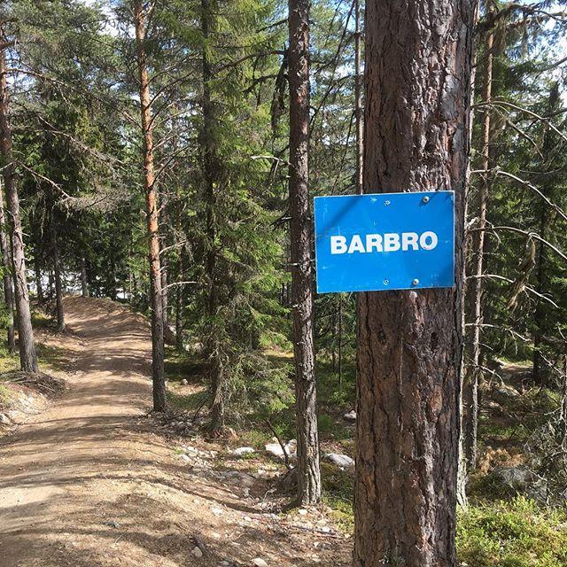 Vackert. Klart man ska döpa en mtb-bana i Järvsö till Barbro.