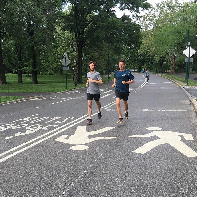Håll dig till höger, Svensson! I Central Park är det - oftast - så mycket cyklar och löpare att man får ha fyra körfält. Trots att det inte får köra bilar här. Och nåde den som går eller cyklar utanför sitt körfält - eller springer åt fel håll! Gubevars!