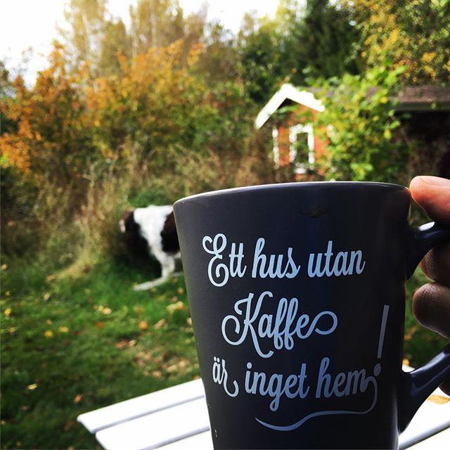 Coffeetajm! (Och hunden käkar gräs. Oklart varför.)