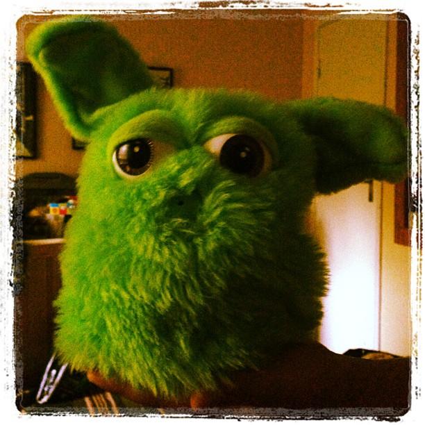 Movitz loppisfynd. Den viftar på öronen och talar - men vad ÄR det för leksak? Någon?