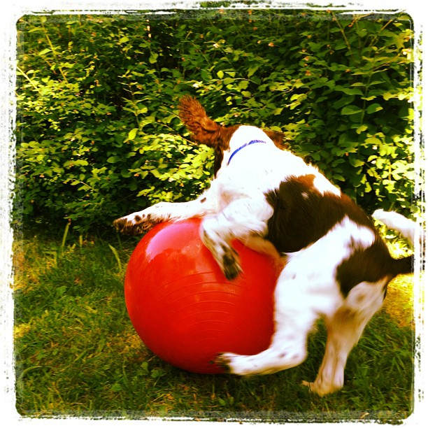 Vivi leker med stor boll.