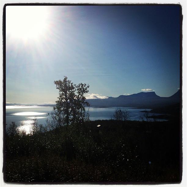 Good morning sunshine. I dag hade det varit enkelt att springa i bergen.