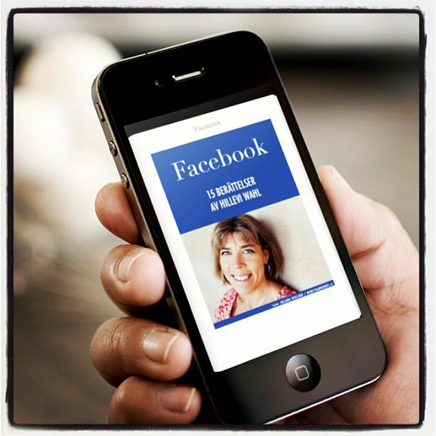 Varsågoda! Dagens gratisbok! Om Facebook. Och lite annat på nätet.