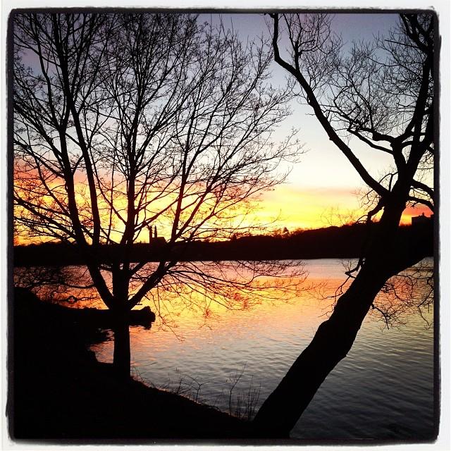 God morgon! Ut och promenera! Der är lätt att andas i dag.