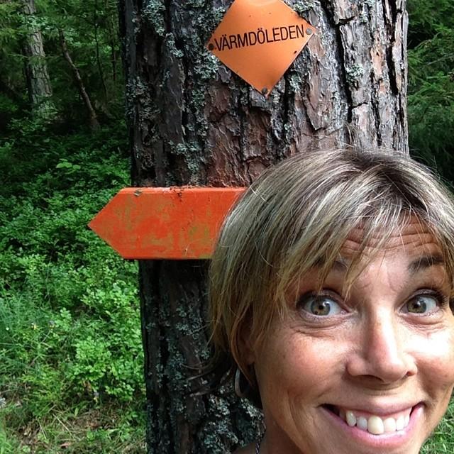 Jag hann vandra en bit på Värmdöleden också. Och plockade smultron, blåbär och hallon. skafferi