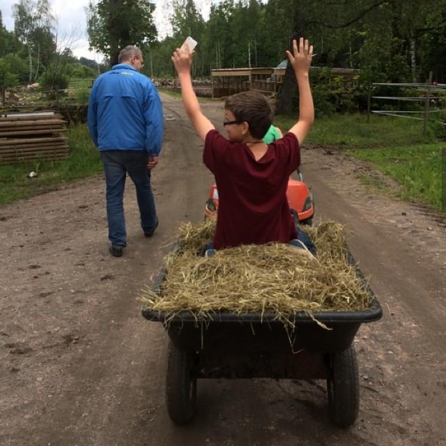 Livet på landet.