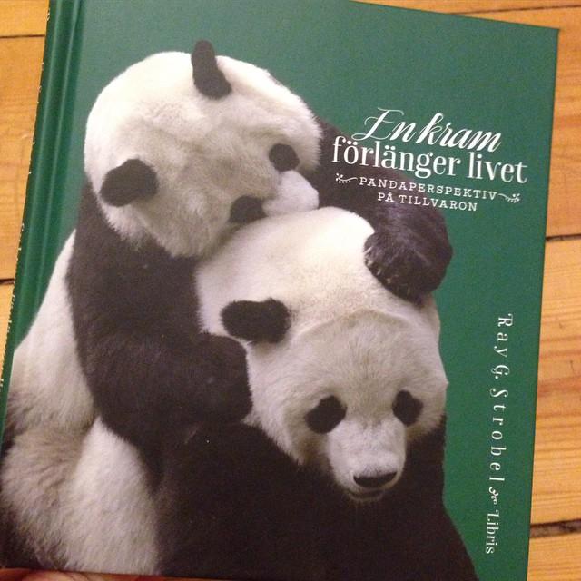 En fantastiskt söt liten bok! Med pandaperspektiv på tillvaron. (Libris förlag)