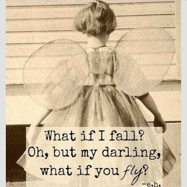 Go fly! Reinsta @shayk_plexus
