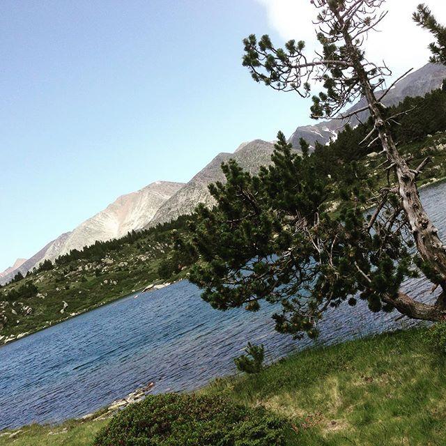 Och här sprang vi! Vilket underskönt landskap. Franska Pyrenéerna.
