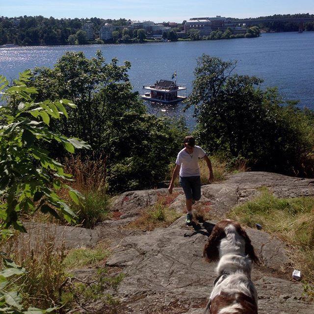 Liten dagsutflykt med hund och barn.