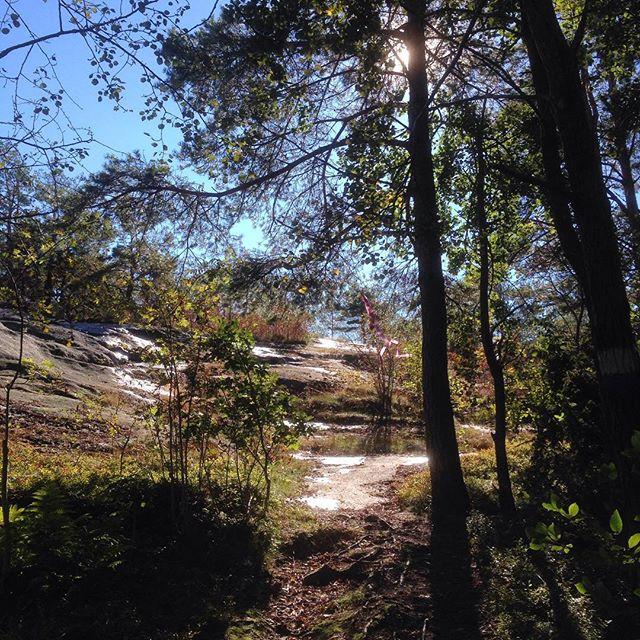 Berg, klippor, skog och uppförsbackar. Trail. Hur kan man inte älska det?