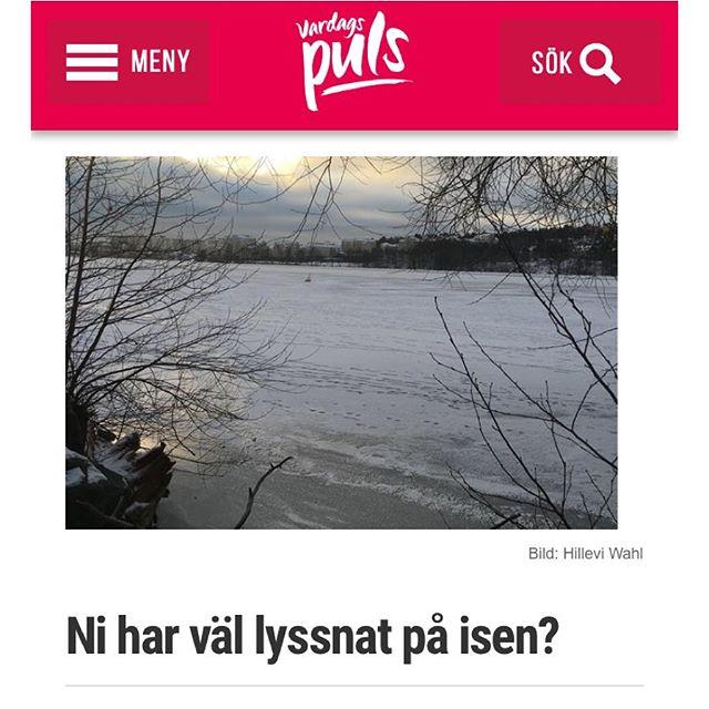 Om fem poliser. Och vad de gjorde. Http://www.vardagspuls.se/bloggar/hillevi-wahl/ni-har-val-lyssnat-pa-isen/