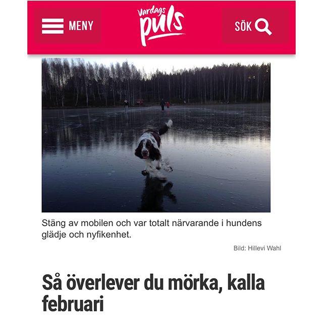 Mina tio bästa tips! http://www.vardagspuls.se/bloggar/hillevi-wahl/sa-overlever-du-morka-kalla-februari/