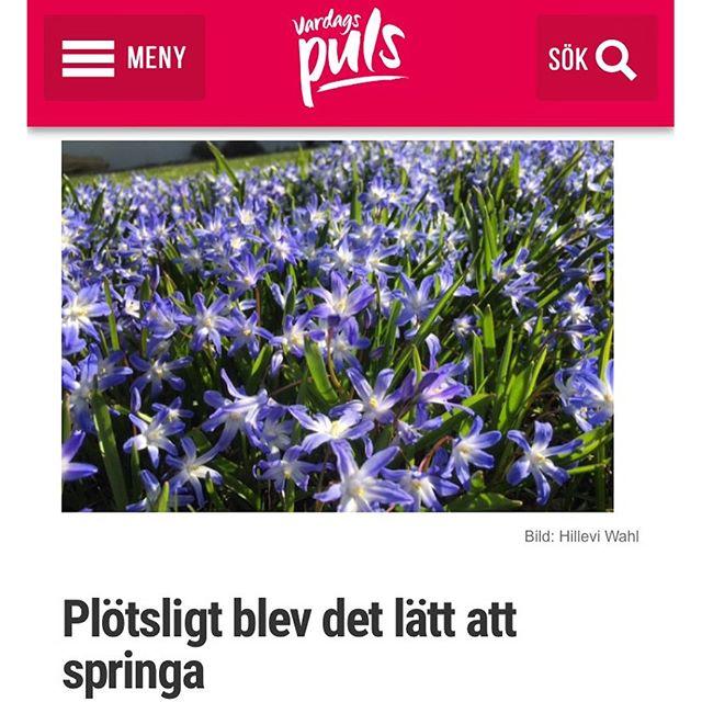 Jobba MED naturkrafterna i stället för mot dem. Allting blir lättare då. Även löpningen http://www.vardagspuls.se/bloggar/hillevi-wahl/plotsligt-blev-det-latt-att-springa/