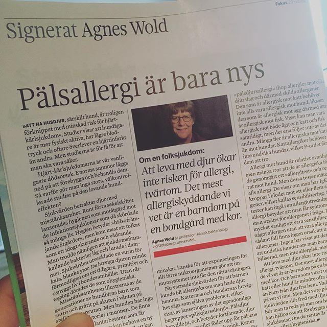 Agnes Wold! Mer husdjur till folket! @tidningenfokus