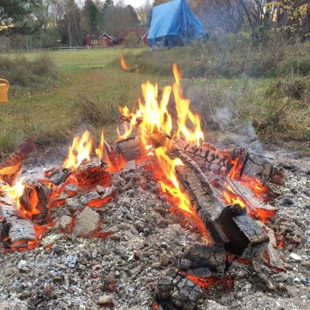 Jag upphör aldrig att fascineras av eld.