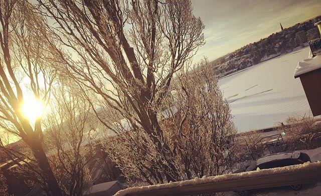 Hej mitt vinterland.
