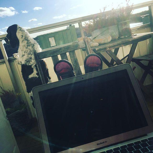 Dagens arbetsplats. På balkongen i solen älskar mitt jobb.