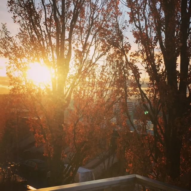Sol ute sol inne. Sol i hjärta och sol i sinne.
