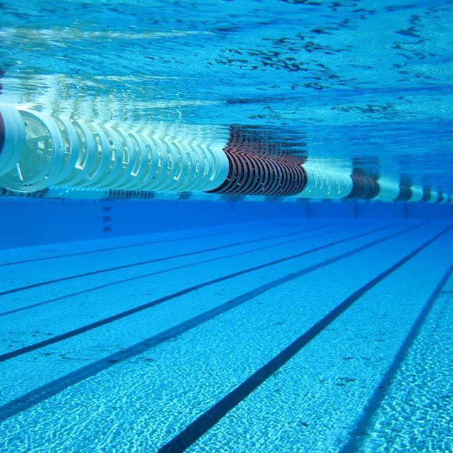 Det är inte lätt att vara nybörjare i simbassängen. Ens som vuxen. Därför skrev jag ner Simmarens tio budord! Printa gärna ut och sätt upp på lämplig plats. ️ Simmarens tio budord 1. Du skall våga ta plats i simbanorna. Speciellt om du är nybörjare. Bassängen tillhör oss alla. 2. Du skall endast ha badkläder på dig i simbassängen. (Kalsonger är icke badkläder.) 3. Du skall duscha innan du kliver i. Annars luktar det eau de cologne i hela bassängen. (I bästa fall.) 4. Du skall bara sprida glädje och pepp i simhallen. Så att du kommer att få flyt genom livet och du må länge leva i fred med dina medsimmare. 5. Du skall inte sitta på linorna. (Om du inte vunnit VM-guld, då får du sitta/stå/hoppa på linorna hur mycket du vill) 6. Du skall icke ligga som en stoppkloss i snabb- och crawlbanorna. Spana in vilken bana som simmar i ditt tempo och hoppa i där. Om du blir omsimmad alltför ofta – byt bana. 7. Du skall voltvända på snabbanan. 8. Du skall vila på sidan, nära linan. Och du skall under inga omständigheter simma ut precis innan en snabbare simmare ska vända. Det kan göra väldigt, väldigt ont. 9. Du skall icke sparka på dina medsimmare. Ej heller knocka dem med ett crawltag. Men du får räkna med att bli blöt i håret. 10. Du skall icke fila fötterna eller raka utvalda kroppsdelar i duschen efteråt. Ej heller utöva yogaövningar i bastun. För allas trevnad.