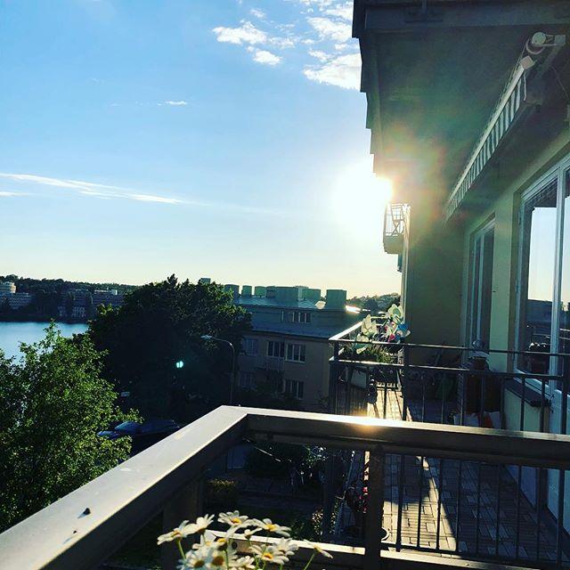 De här magiska sommarkvällarna. Om man kunde fånga känslan i hjärtat. En bok, en kopp kaffe, ett svenskt landslag att vara så stolt över. Vilken fin dag att leva i. ️